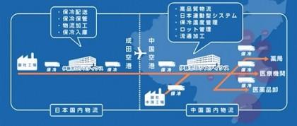 日中医薬品物流のフロー図