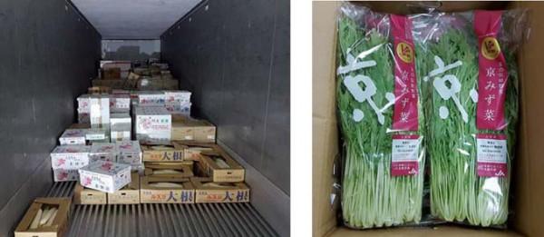 香港向け京野菜輸出に成功、冷蔵コンテナ混載便で